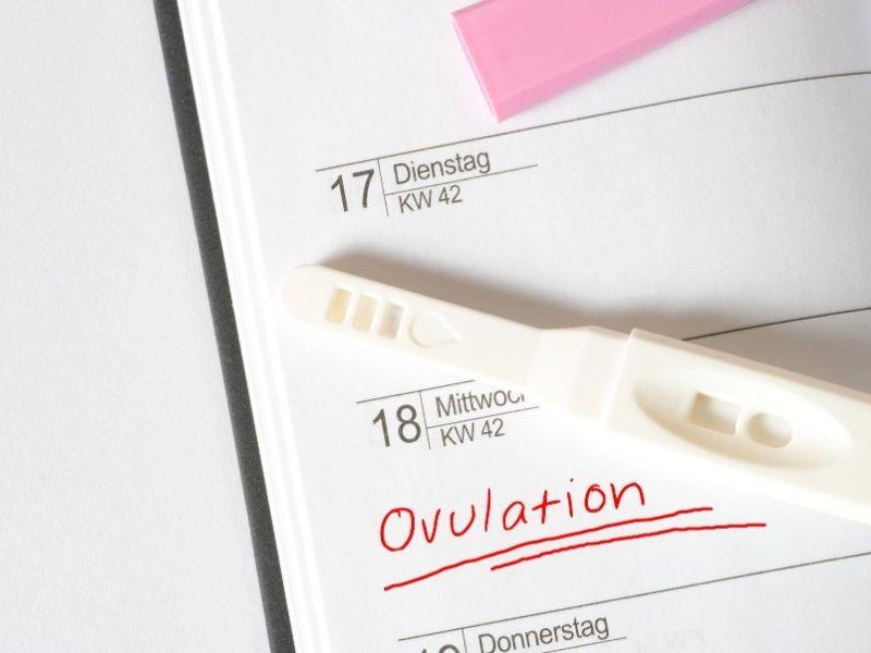 Az ovuláció jelei lehetnek a középidős fájdalom, esetenként enyhe vérezgetés is