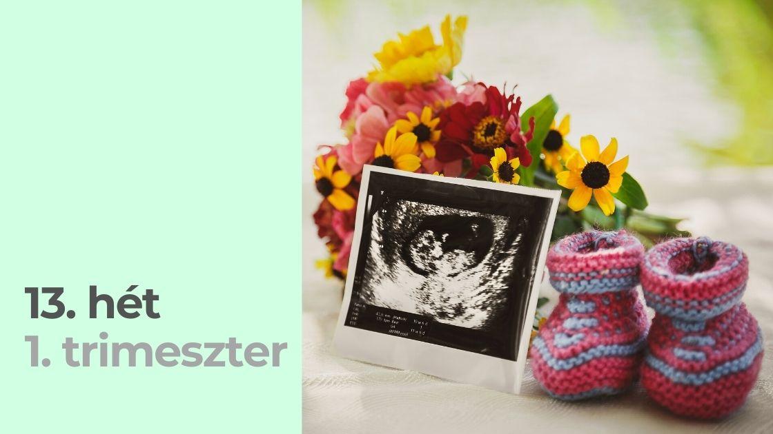 A terhesség 13. hete